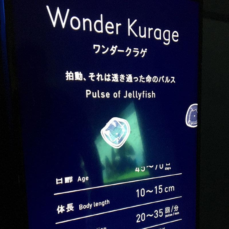 blog_201019_4.jpg